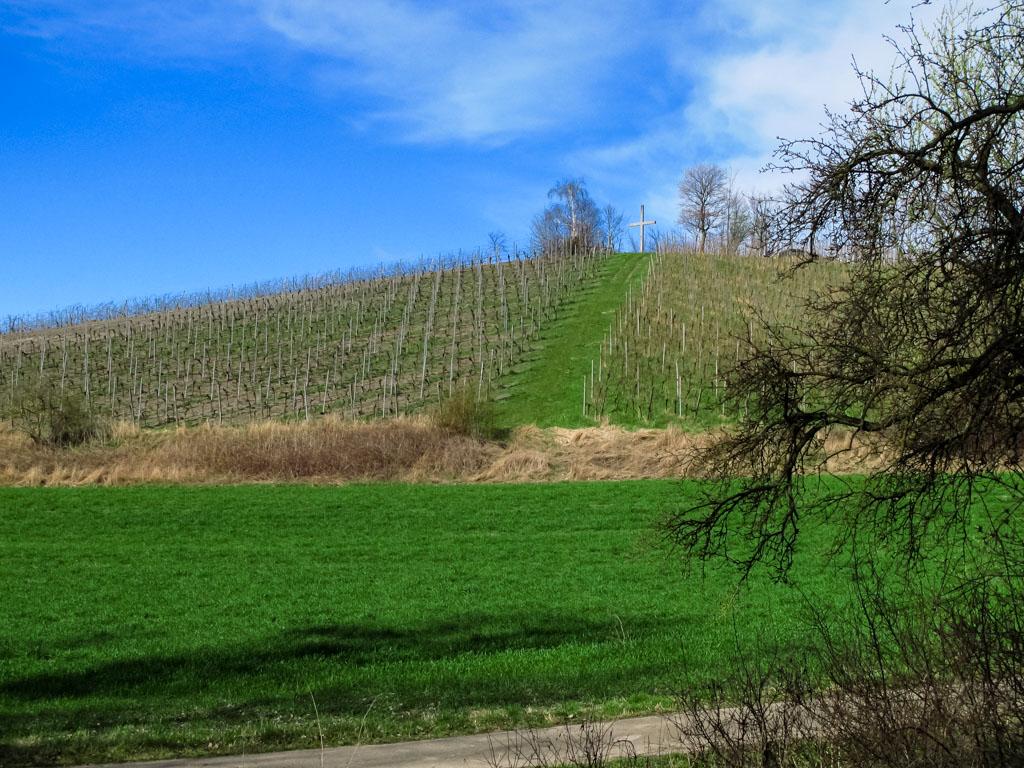 TraumRunde Wiesenbronn vorbei am Geisberg