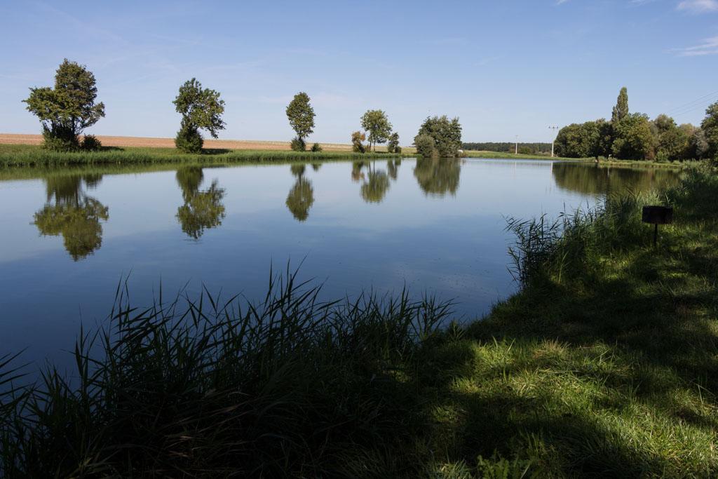 TraumRunde Wiesenbronn Fischteich am Trautberg