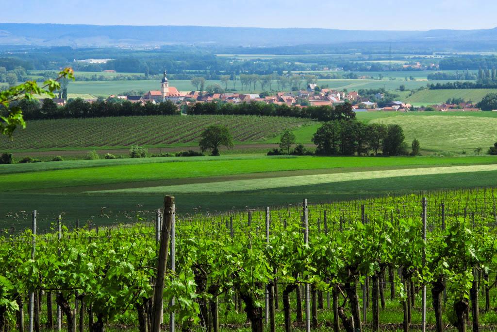 Alter Schwanbergweg - Blick vom Wachhügel