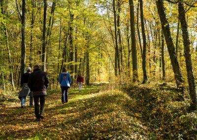2015_Herbstwanderung_01