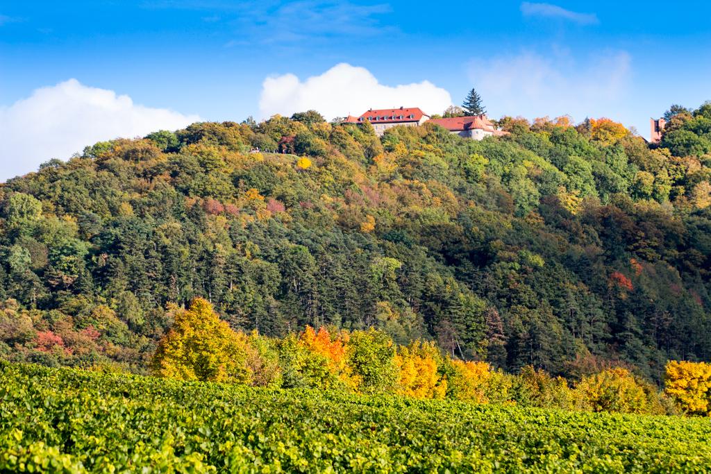 Vom Küchenmeister zum Schloss Schwanberg