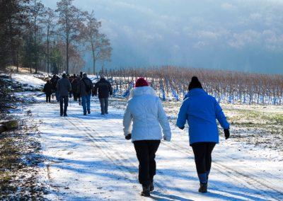 2012_011_Winterwanderung_Schwanberg