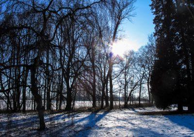 2012_039_Winterwanderung_Schwanberg