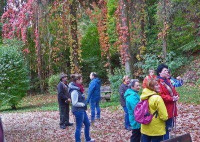 Herbstwanderung2013-10-13-06