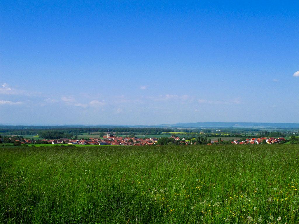 Wanderweg W1 - Blick vom Wald auf Wiesenbronn