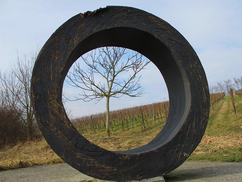 Weinkunstweg - Jahreszyklus