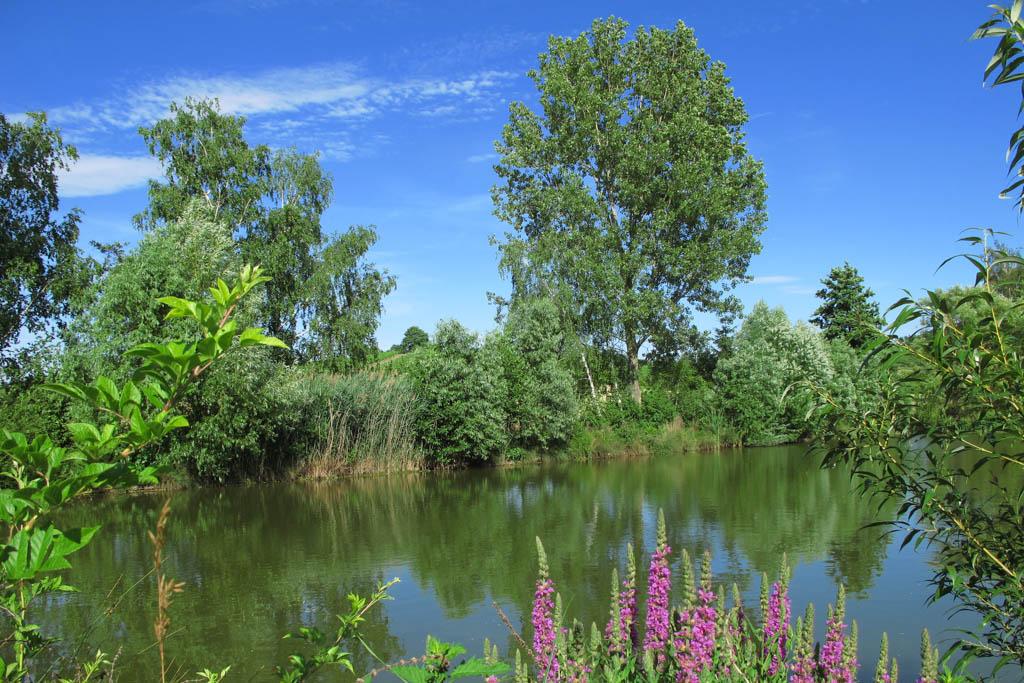 Schneckenweg - Koboldsee