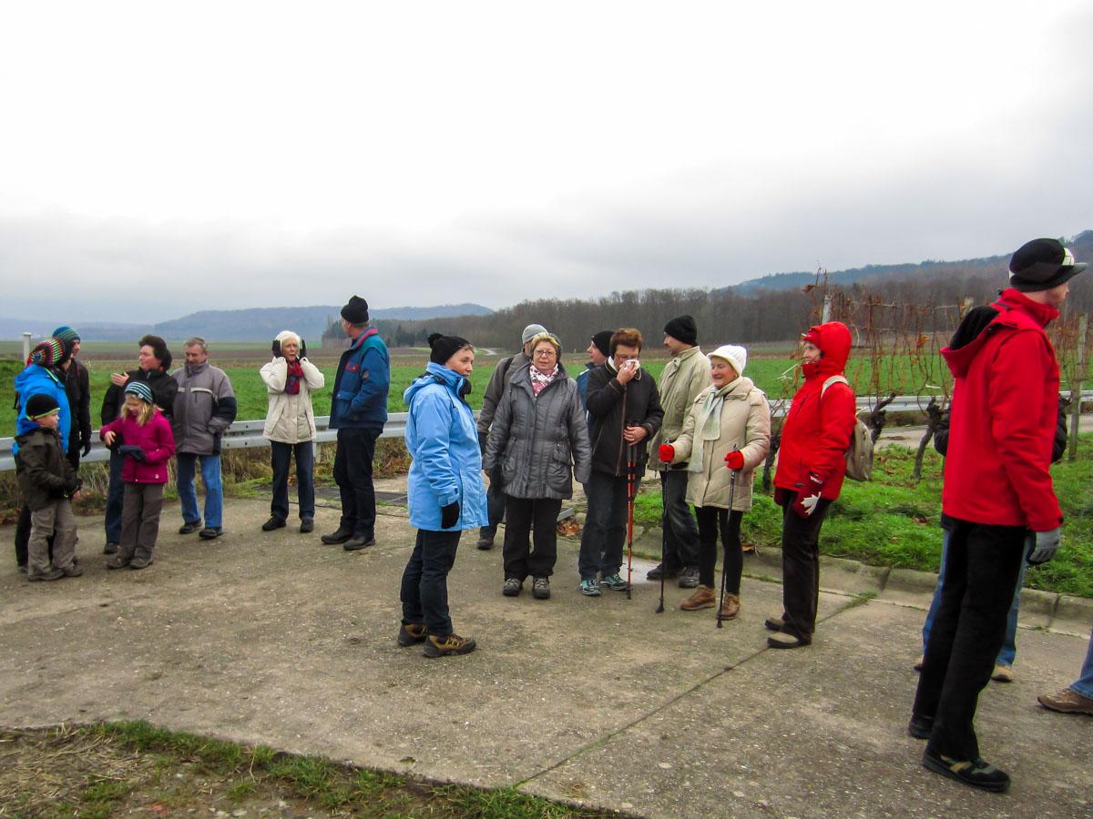 Wandergruppe in den Weinbergen