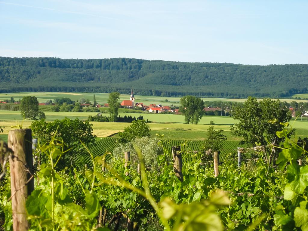 Blick vom Wutschenberg auf Wiesenbronn und Schwanberg