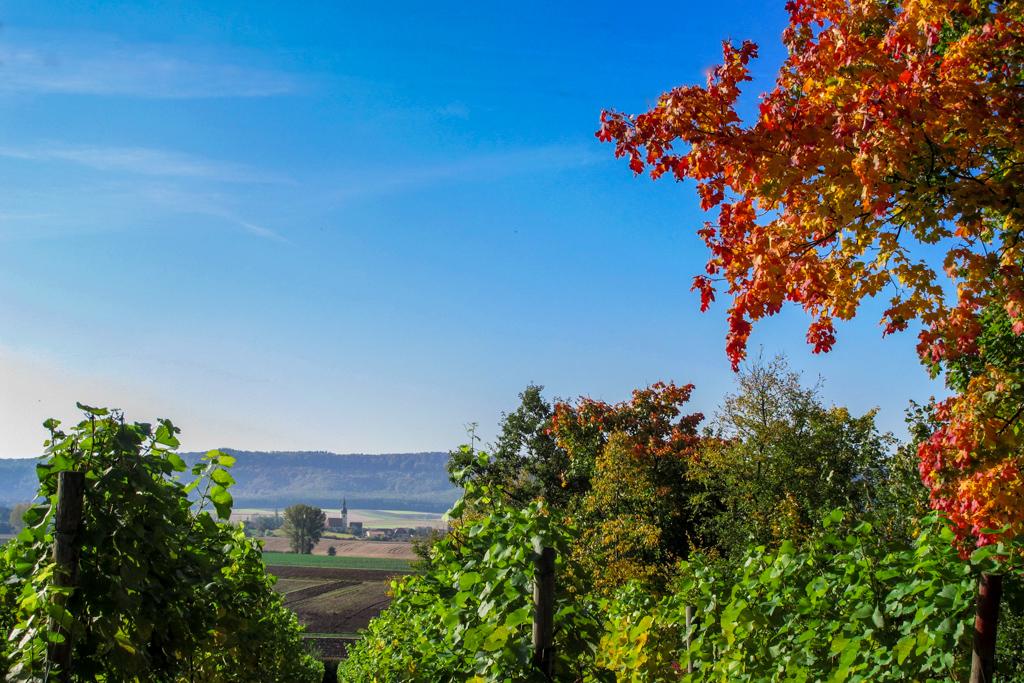 Vom Wutschenberg über Wiesenbronn zum Schwanberg